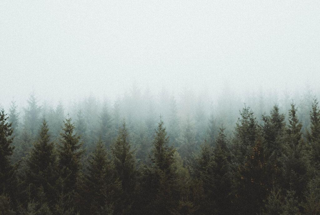 miljö o hälsa, hur andas vi, ut och gå